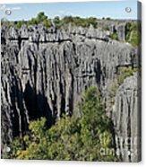 Tsingy De Bemaraha Madagascar 1 Acrylic Print