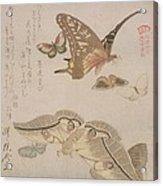 Tsubasa Ni Wa... From The Series Acrylic Print