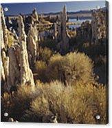 Ttufa Formations Mono Lake California Acrylic Print