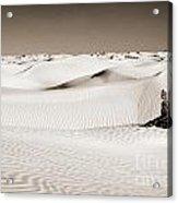 Tuareg Acrylic Print