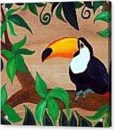 Tucan Acrylic Print