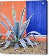 Tucson Barrio Blue Door Painterly Effect Acrylic Print