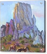 Tucson Butte With Two Coyotes Acrylic Print