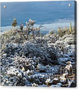 Tucson Covered In Snow Acrylic Print