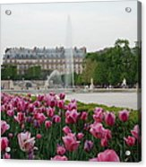 Tuileries Garden In Bloom Acrylic Print by Jennifer Ancker