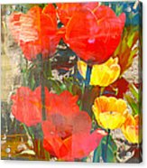 Tulip Abstracts Acrylic Print