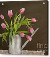 Tulip Bouquet  Acrylic Print by Alana Ranney