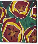 Tulip Festival Acrylic Print