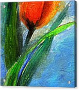 Tulip - Flower For You Acrylic Print