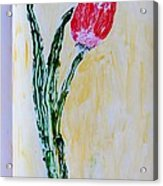 Tulip For You Acrylic Print