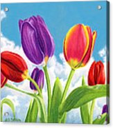 Tulip Garden Acrylic Print by Sarah Batalka