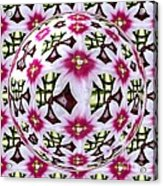 Tulip Kaleidoscope Under Glass Acrylic Print