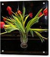 Tulip Mania 18 Acrylic Print