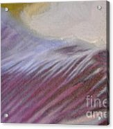 Tulip Time Detail Acrylic Print