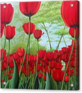 Tulipanes  Acrylic Print