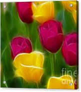 Tulips-6768-fractal Acrylic Print