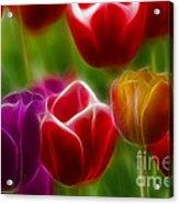 Tulips-7022-fractal Acrylic Print