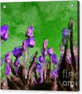 Tulips Abound Green Purple Acrylic Print