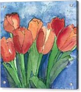 Tulips After The Rain Acrylic Print