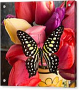 Tulips And Butterflies Acrylic Print