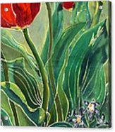 Tulips And Pushkinia Detail Acrylic Print by Anna Lisa Yoder