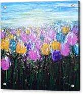 Tulips At Sunrise Acrylic Print