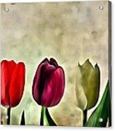 Tulips Color Acrylic Print