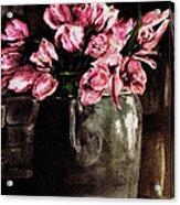 Tulips Acrylic Print by Dana Patterson