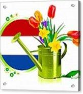 Tulips Eco Acrylic Print