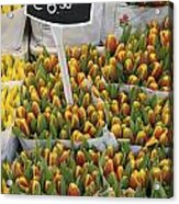 Tulips For Sale In Market, Close Up Acrylic Print
