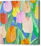 Tulips Multicolor Acrylic Print