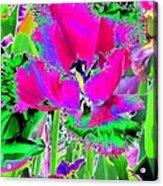 Tulips - Perfect Love - Photopower 2184 Acrylic Print