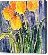 Tulips Acrylic Print by Sherry Harradence