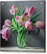 Tullips from Holland Acrylic Print