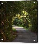Tunnel Of Trees And Light Acrylic Print