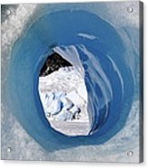Tunnel Vision Acrylic Print