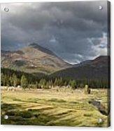 Tuolumne Meadows In Yosemite National Park Acrylic Print