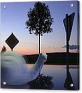 Turbo Snail Acrylic Print