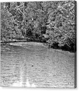 Turkey Creek Bw Acrylic Print by JC Findley