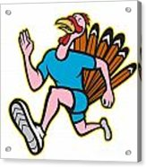 Turkey Run Runner Side Cartoon Isolated Acrylic Print by Aloysius Patrimonio