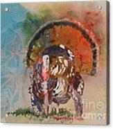 Turkey Time Acrylic Print