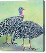 Turkey Trot Girls Acrylic Print