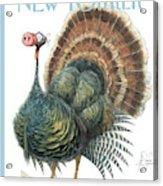 Turkey Wearing A False Pig Nose Acrylic Print