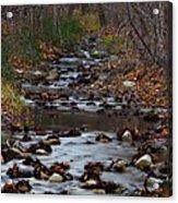 Turner Falls Stream Acrylic Print