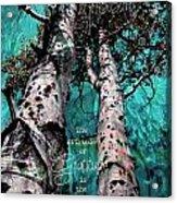 Turquois Trees  Acrylic Print
