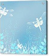 Turquoise Dragonfly Art Acrylic Print