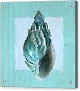Turquoise Seashells V Acrylic Print by Lourry Legarde