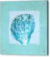 Turquoise Seashells Vii Acrylic Print