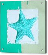 Turquoise Seashells Xi Acrylic Print by Lourry Legarde