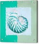 Turquoise Seashells Xii Acrylic Print by Lourry Legarde